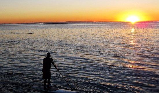 Amity, Australia: dolphin in the left