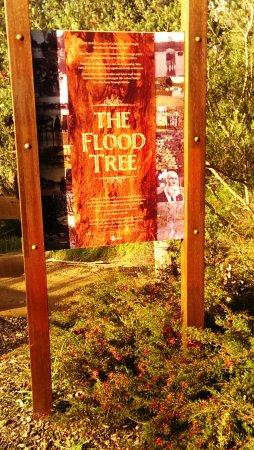 Nannup, Australia: The Flood Tree