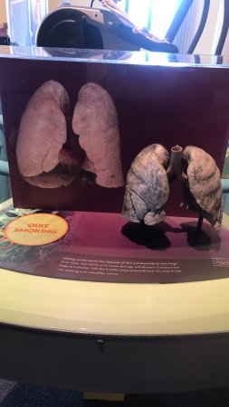 The Franklin Institute : photo0.jpg