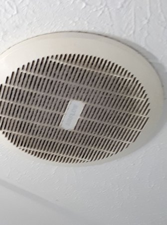 Elanora, Austrália: Fan in bathroom covered in dust