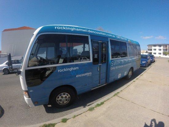 Rockingham Wild Encounters: The Bus