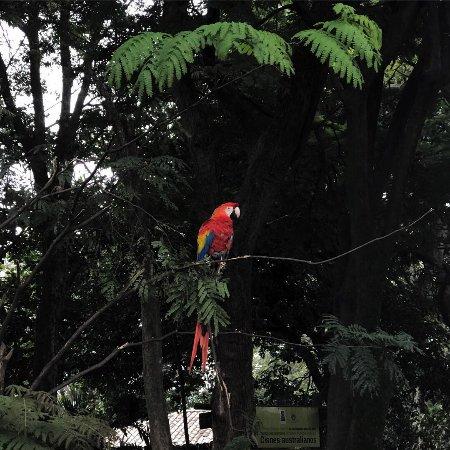 Parque Zoologico Santa Fe: IMG-20170913-WA0027_large.jpg