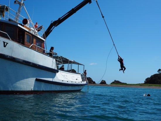 Russell, Nueva Zelanda: Roe swing so awesome
