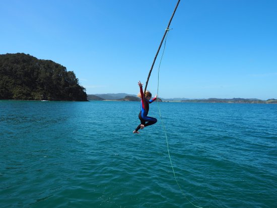 Russell, New Zealand: Rope swing!!