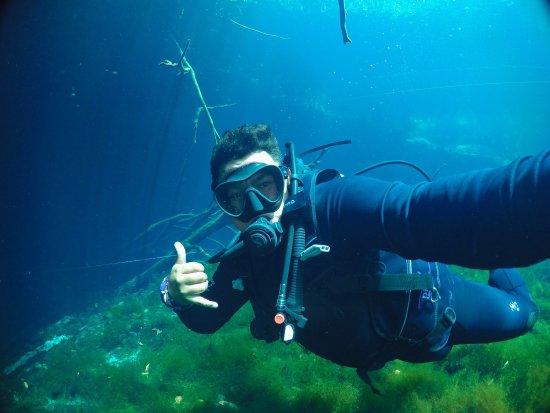 La Calypso Dive Center: photo1.jpg