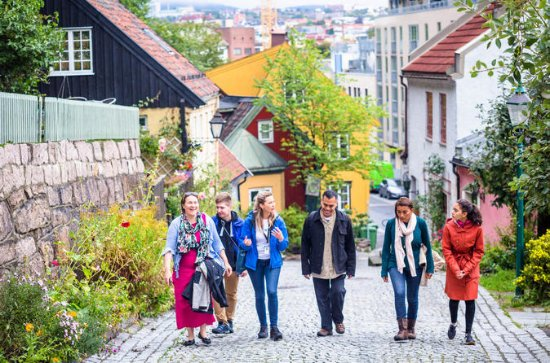 Small-Group Walking Tour of the Hip Side of Oslo