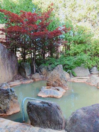 Yumoto Shirogane Onsen Hotel : 露天風呂