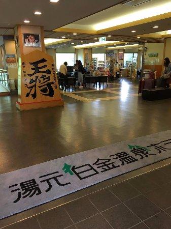 Yumoto Shirogane Onsen Hotel : 接待處