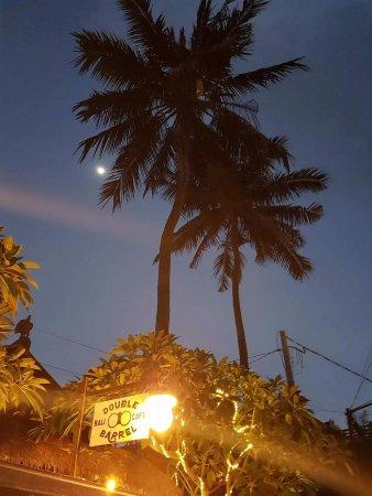 Omang Omang Bar Diner: Late night Coconuts.