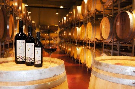 Wine tasting - 1 Day Tour