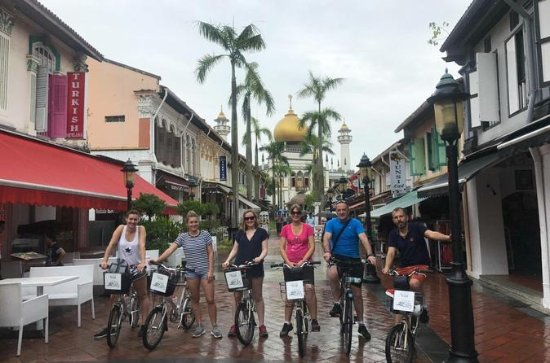 Historical Singapore Bike Tour