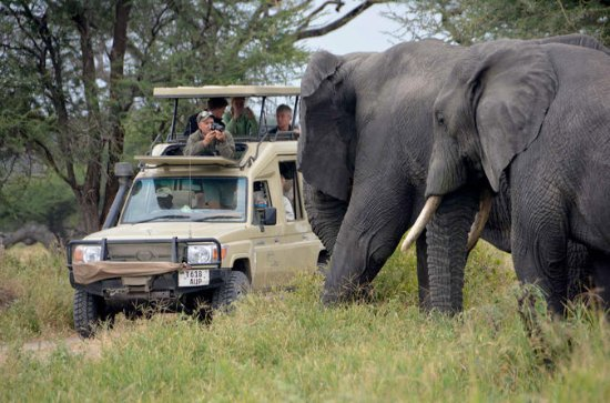 5Days Best Camping Safari in Tanzania...