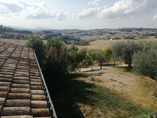 Montottone, Italia: IMG-20170909-WA0023_large.jpg