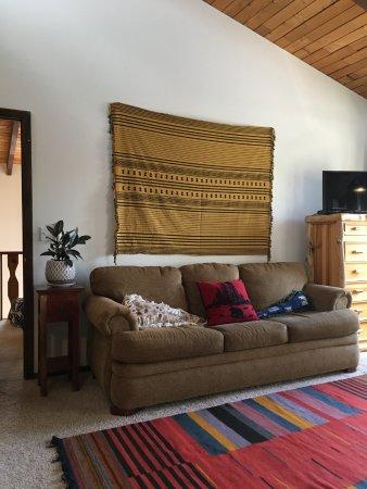 Dandelion Inn : Bunk Room sleeper couch