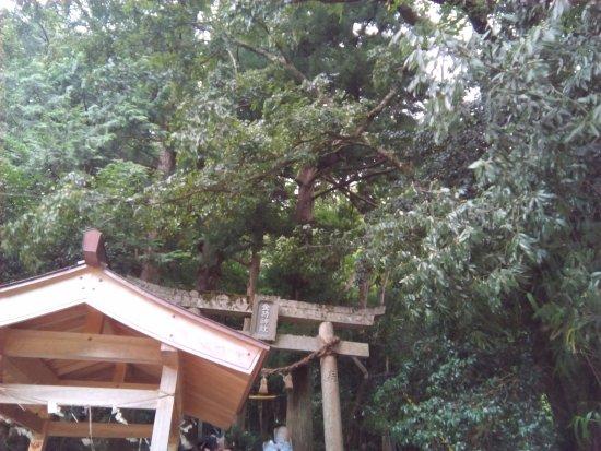 Hino-cho, Japón: 金持神社の鳥居