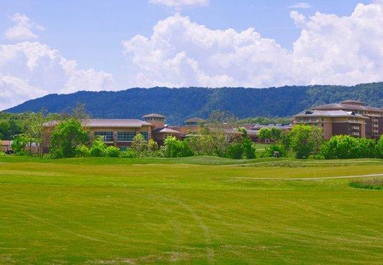 Κίνγκσπορτ, Τενεσί: Cattails Golf