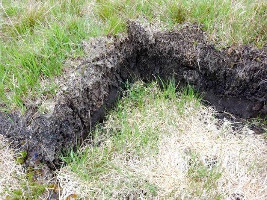 Dervaig, UK: Recently dug peat
