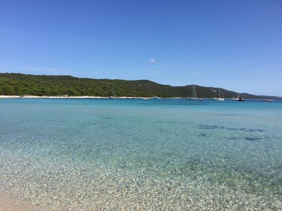 Dugi Island, Kroatien: photo0.jpg