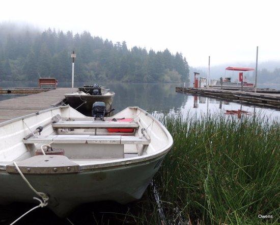 Mercer Lake Resort: The dock!