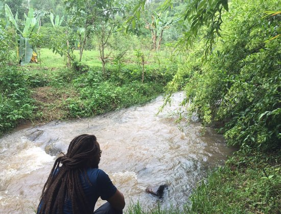 Irgalem, Äthiopien: photo7.jpg