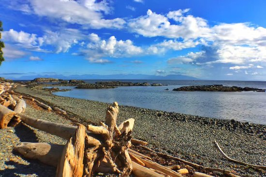 Neck Point Park is a amazing place in Nanaimo. The wonderful views, great walking track and dogs