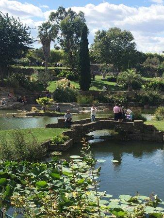 Photo de le jardin de saint adrien servian tripadvisor - Les jardins de saint adrien ...
