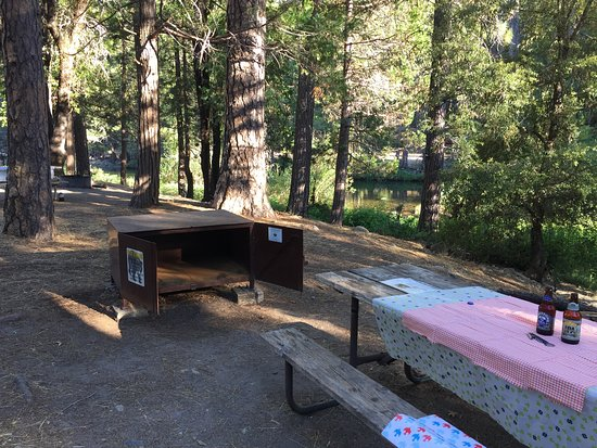 Wawona Campground: IMG_0683_large.jpg
