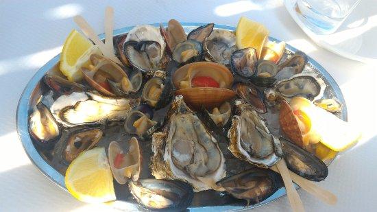 Ischitella, Italy: Molluschi di produzione propria