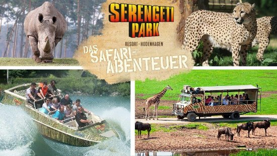 Serengeti Park Something Different Review Of Serengeti Park Hodenhagen Hodenhagen Germany Tripadvisor