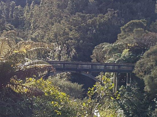 Taranaki Region, Nouvelle-Zélande : The Bridge to Somewhere
