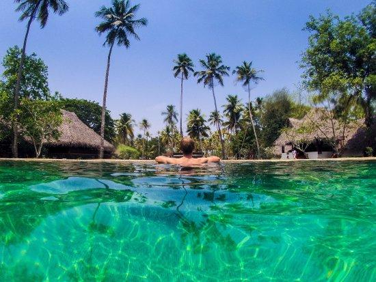 Marari Beach Resort Mararikulam Reviews
