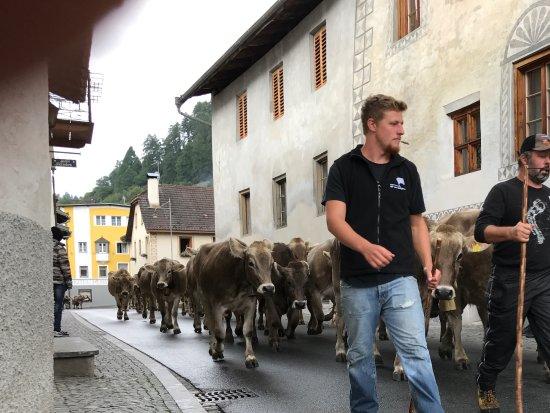 Mustair, Suiza: Alpabzug