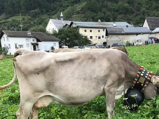 Mustair, Suiza: val Müstair eben ... tradizionell