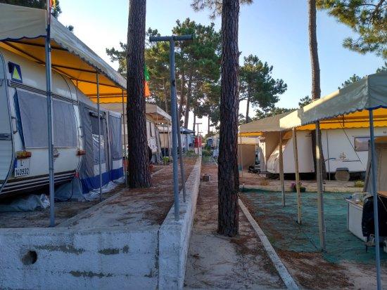 Vila Nova de Santo Andre, Portugal: Igualito que la zona de acampada 2