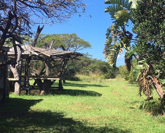 Chintsa, Zuid-Afrika: photo6.jpg