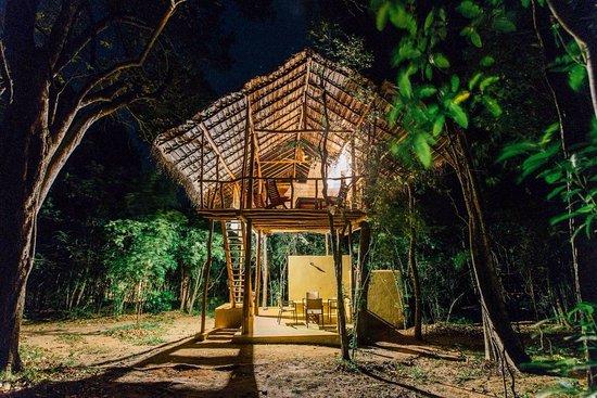 Back Of Beyond Jungle Hideaway Pidurangala Updated 2019
