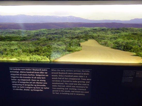 Reykjavík 871±2 : What the surrounding landscape looked like