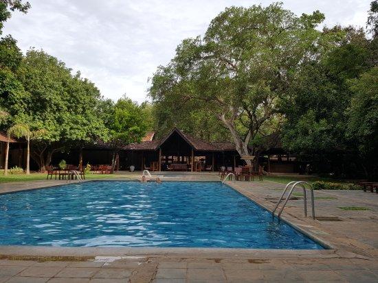 Hotel Sigiriya: 20170907_124810_large.jpg