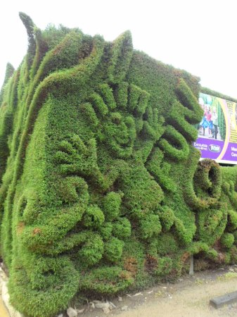 Arthurs Seat, Australia: Topiary wall