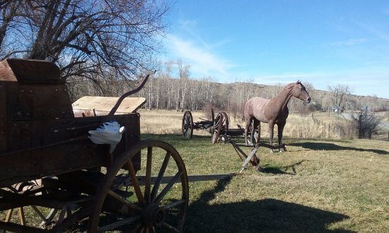 Fishtail, MT: Side Yard Exhibit