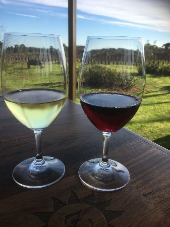 Moorooduc, Australia: Excellent Reserve Wines at Stumpy Gully Winery