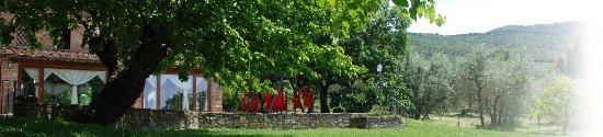 Arezzo, Italien: photo4.jpg