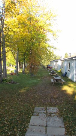 Lavigne, Canada : front view of all cottages