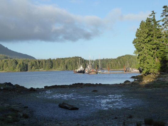 Water's Edge Shoreside Suites: Umgebung der Anlage