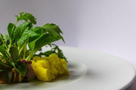 L 39 orto delle rare insalate picture of paolo teverini bagno di romagna tripadvisor - Paolo teverini bagno di romagna ...