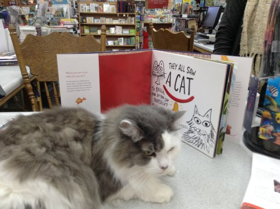 "Bellows Falls, VT: Bella is wondering about this book's inscription.  Cat?  Me? Aren't I just a little ""people""?"