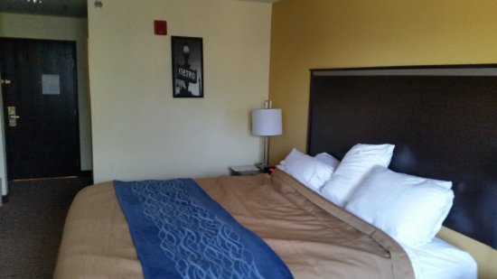 Comfort Inn & Suites Texas Hill Country in Boerne