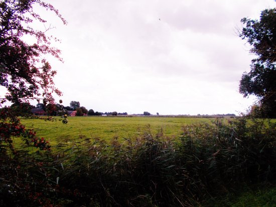 Butjadingen, Germany: Fußweg zur Mühle