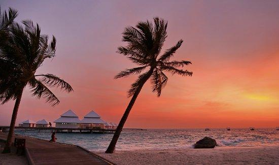 Diamonds thudufushi desde thudufushi island for Conrad maldives precios