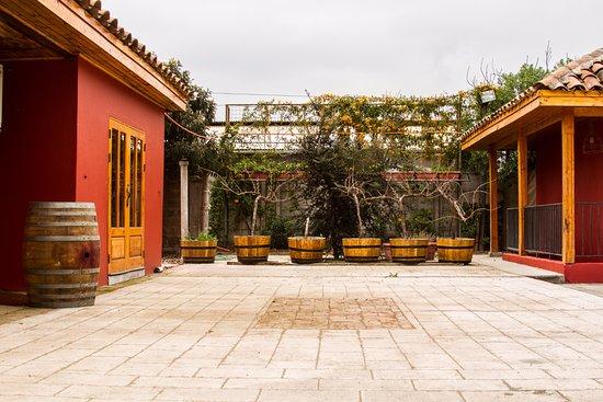 San Felipe, Chile: Terraza Viña el Escorial